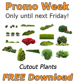 Promotion-Week