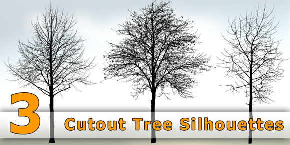 Cutout-Architecture-Tree-Silhouettes_Free-Download-PNG_580