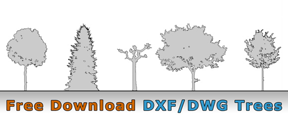 free tree drawing_architecture cad dwg dxf - Architecture Drawing Of Trees