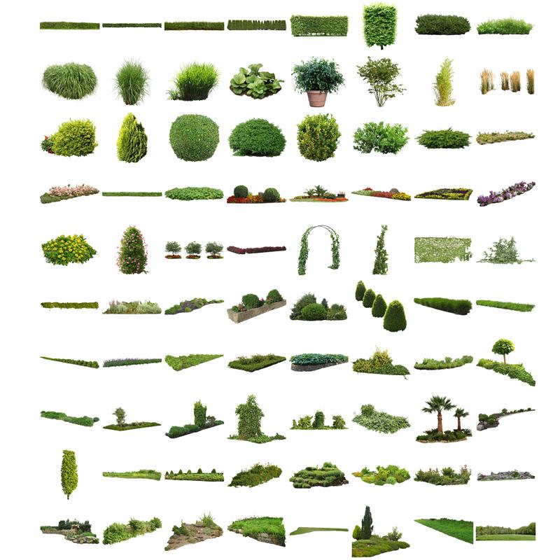 Plants tree service business plan bundle
