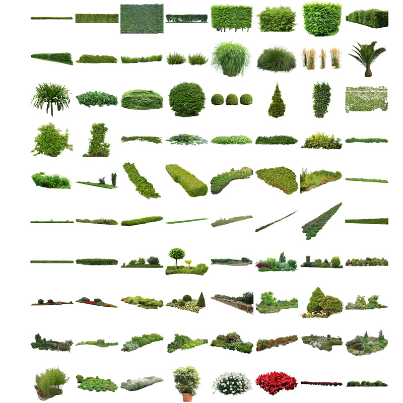Cutout plants v02 plants entourage for architecture for Landscape design guide