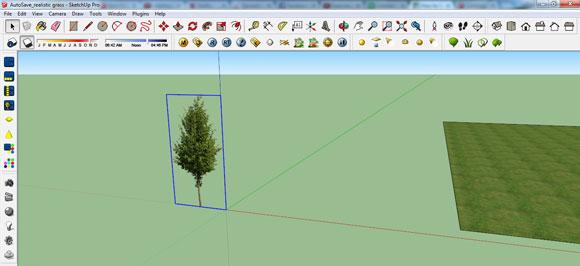 02_tree_image_580