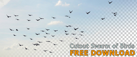 Cutout Swarm Of Flying Birds Free Architecture
