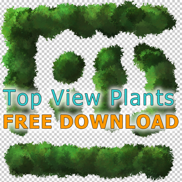 Plant-Tree-Cutout-PlanView-PNG-Free-Download-Architecture
