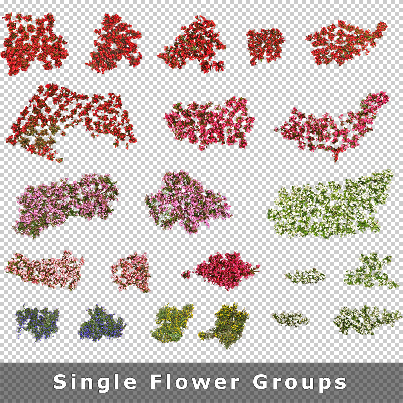 Top View Flowers Cutout Plan Images PNG For