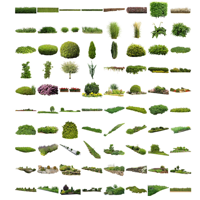Cutout Plants V04 U2013 Graphics For Landscape Architecture Visualization