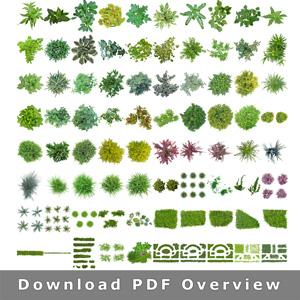 Masked-Plants-Overview-transparent-background-PNG