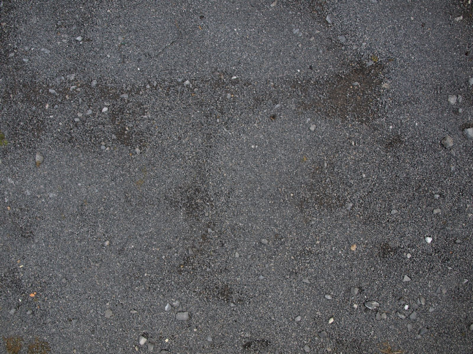 Ground-Nature_Texture_A_PA045783