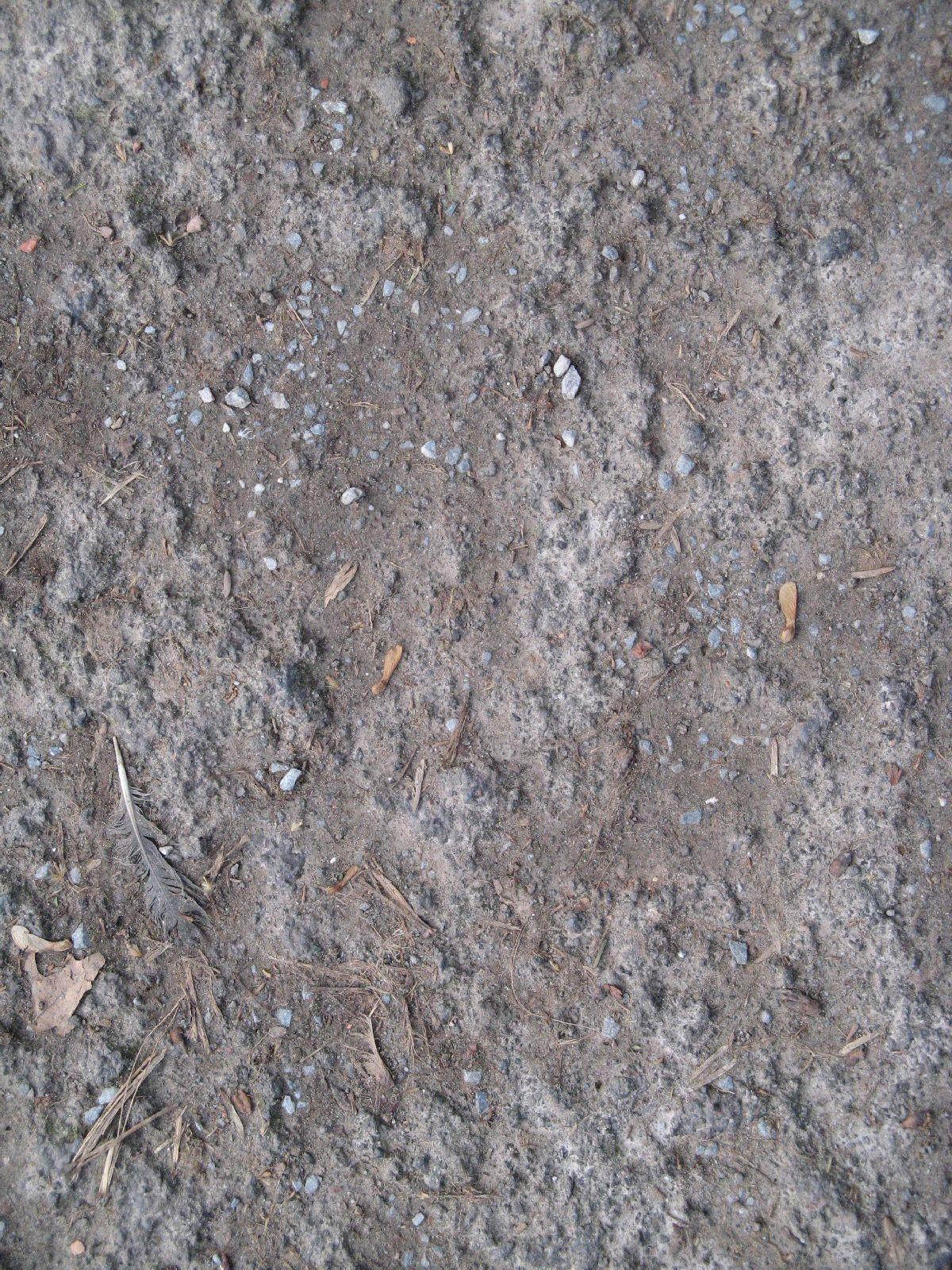 Ground-Nature_Texture_B_3841