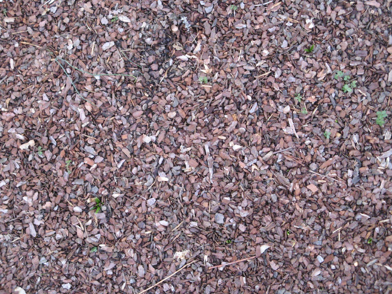 Ground-Nature_Texture_B_4821
