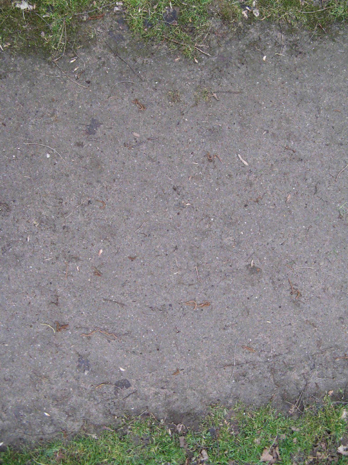 Ground-Nature_Texture_B_5594