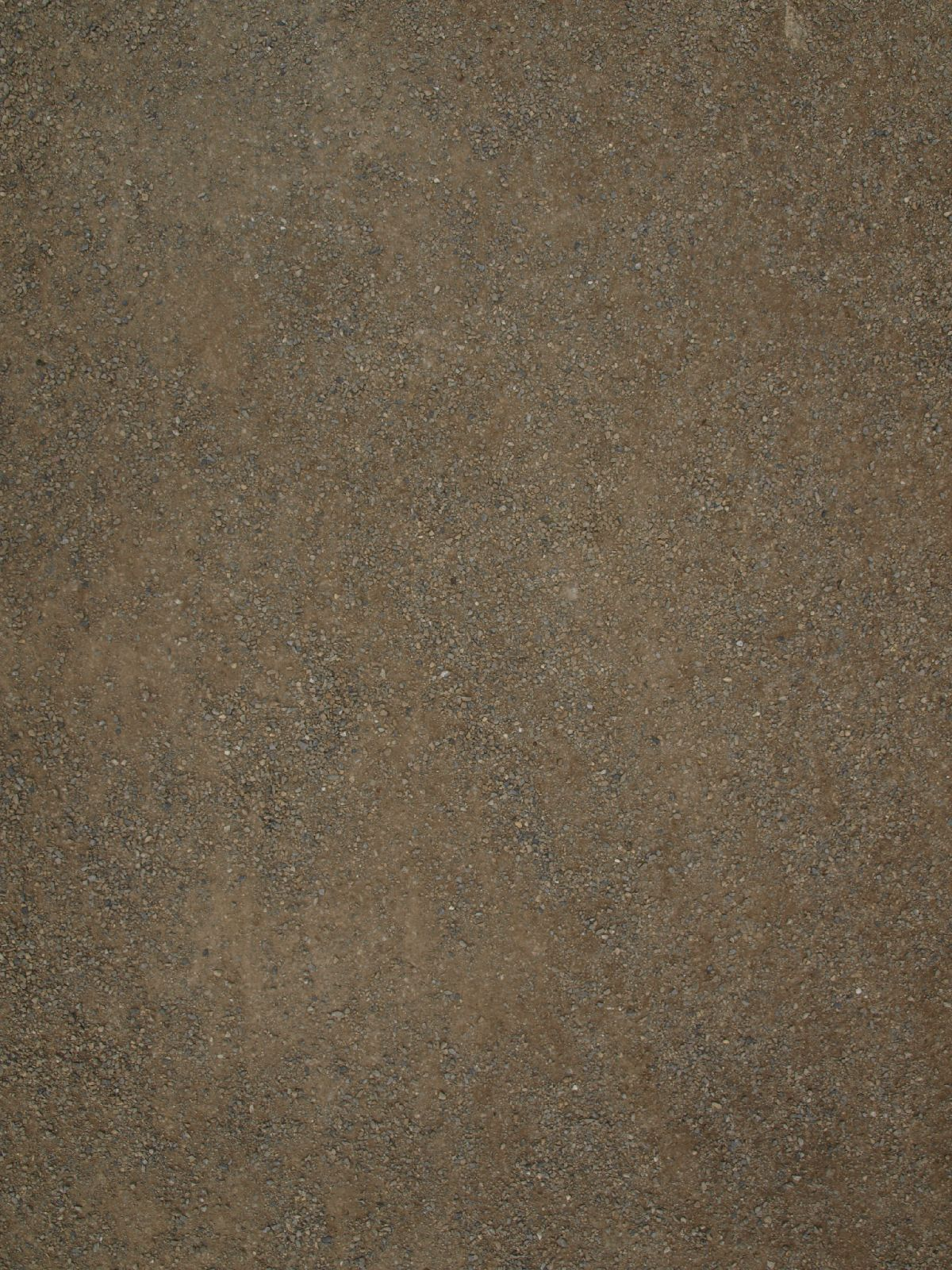 Ground-Nature_Texture_A_P4120841