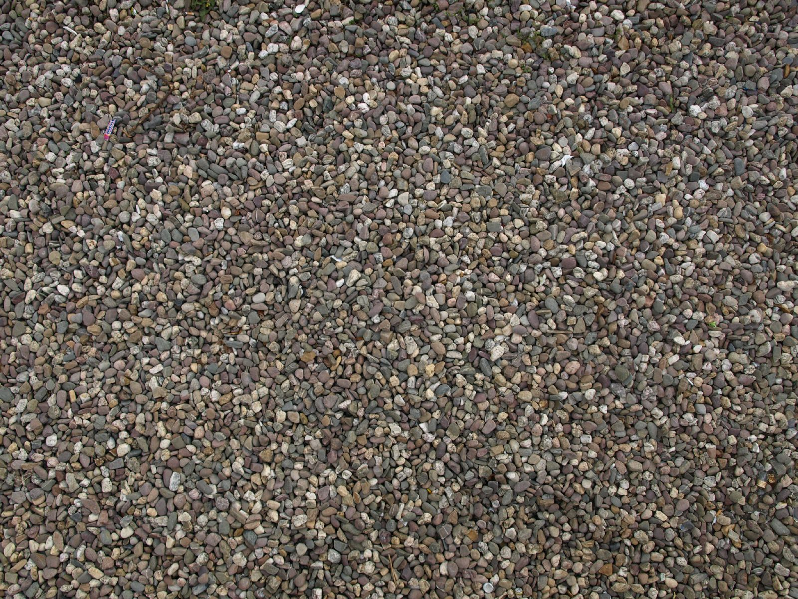 Ground-Nature_Texture_A_P4120902