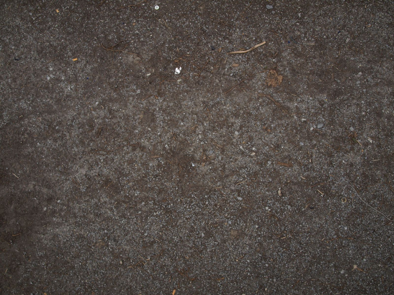 Ground-Nature_Texture_A_P4120997