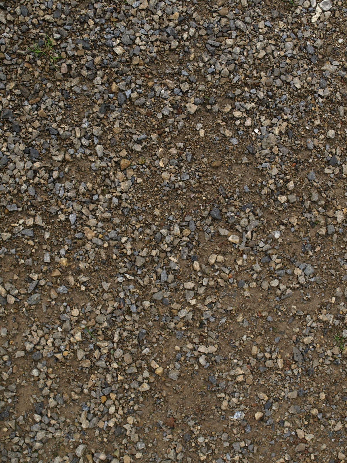 Ground-Nature_Texture_A_P4131069