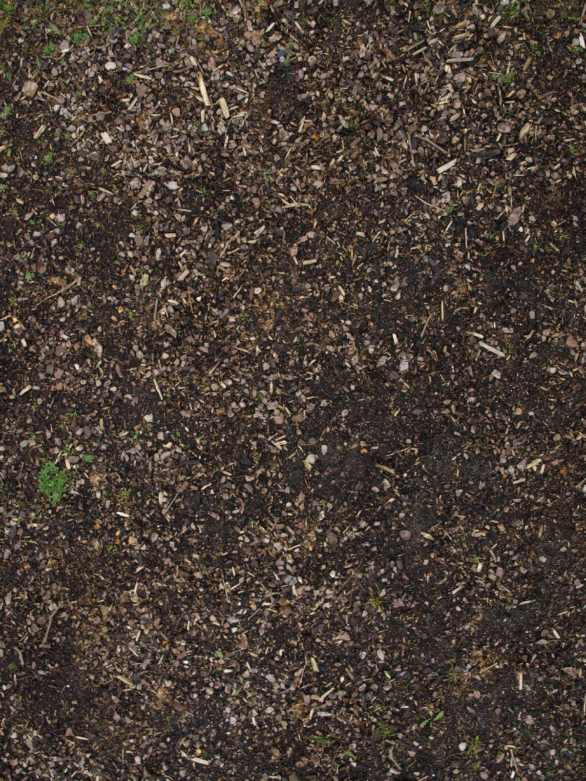 Ground-Nature_Texture_A_P4131107