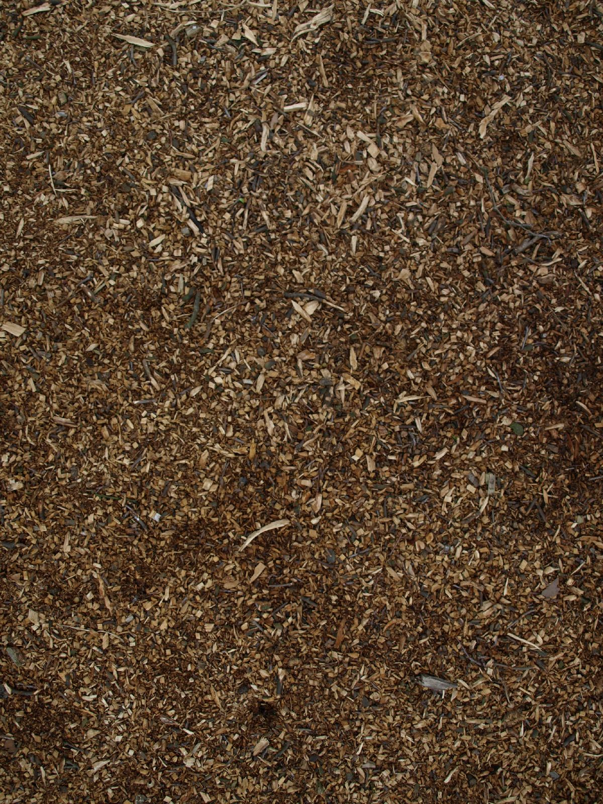 Ground-Nature_Texture_A_P4131167