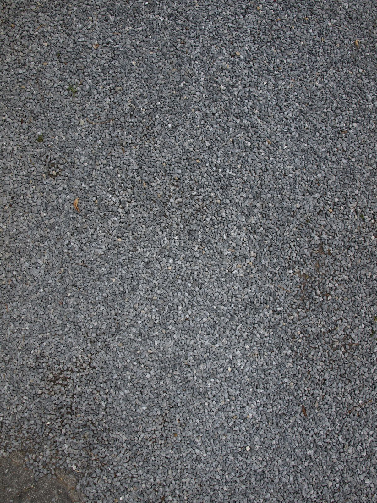 Ground-Nature_Texture_A_P4261811