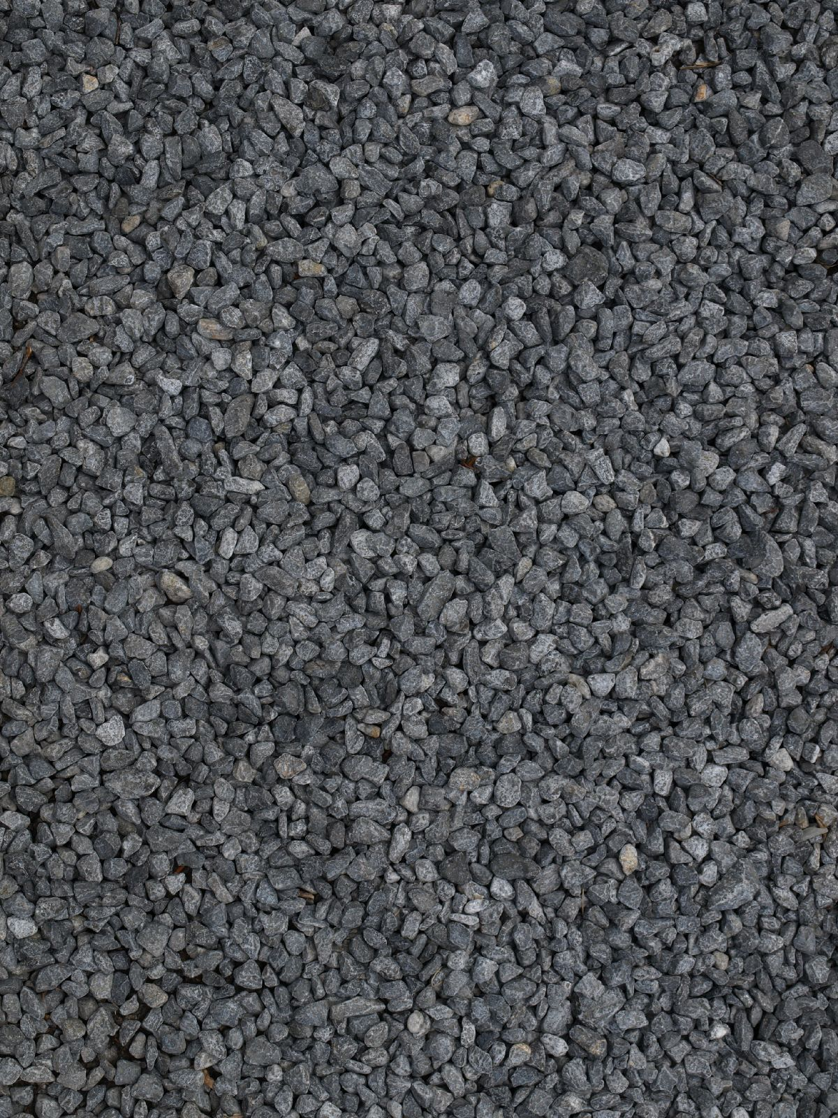 Ground-Nature_Texture_A_P4261812