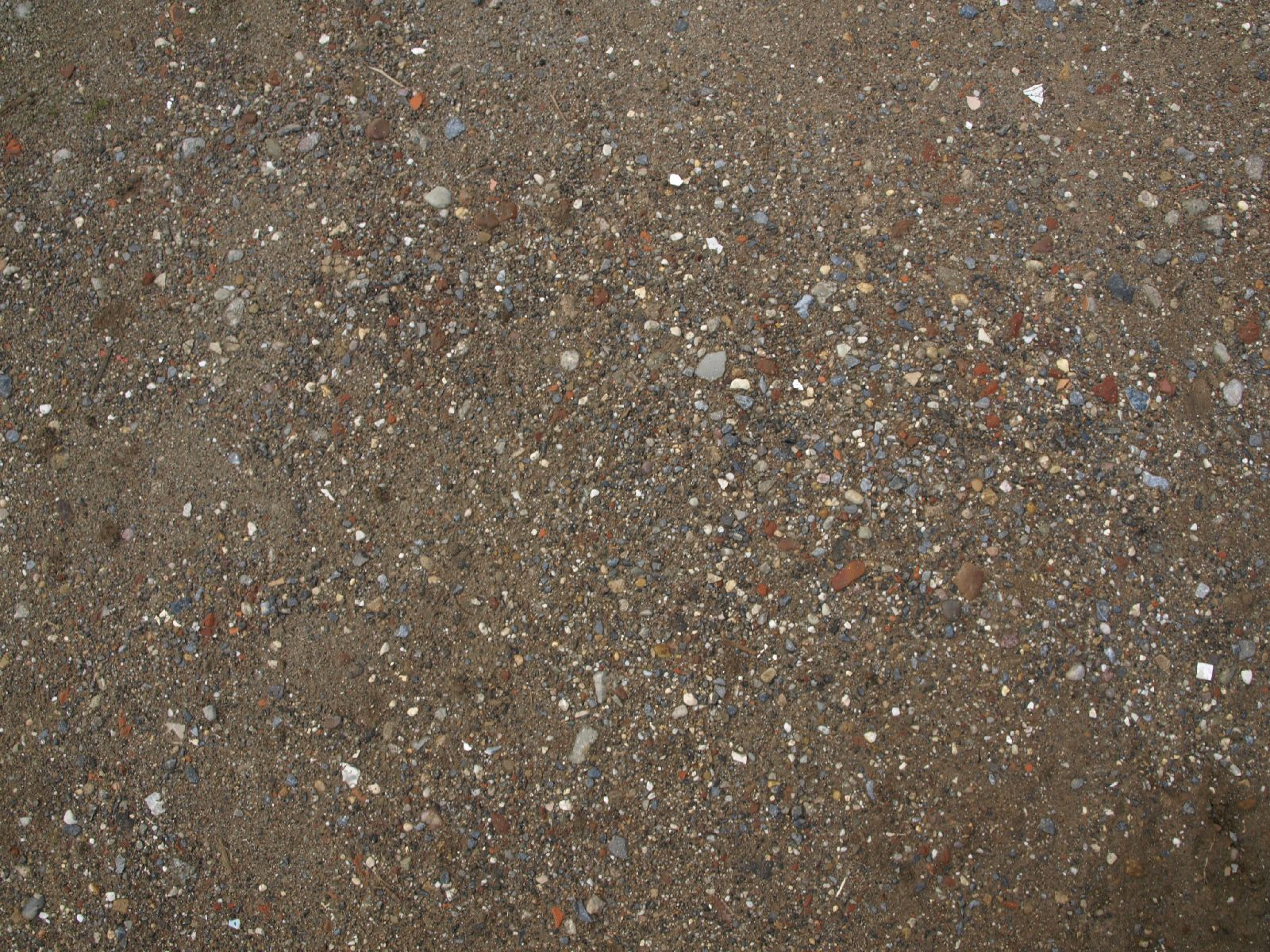Ground-Nature_Texture_A_P5022091