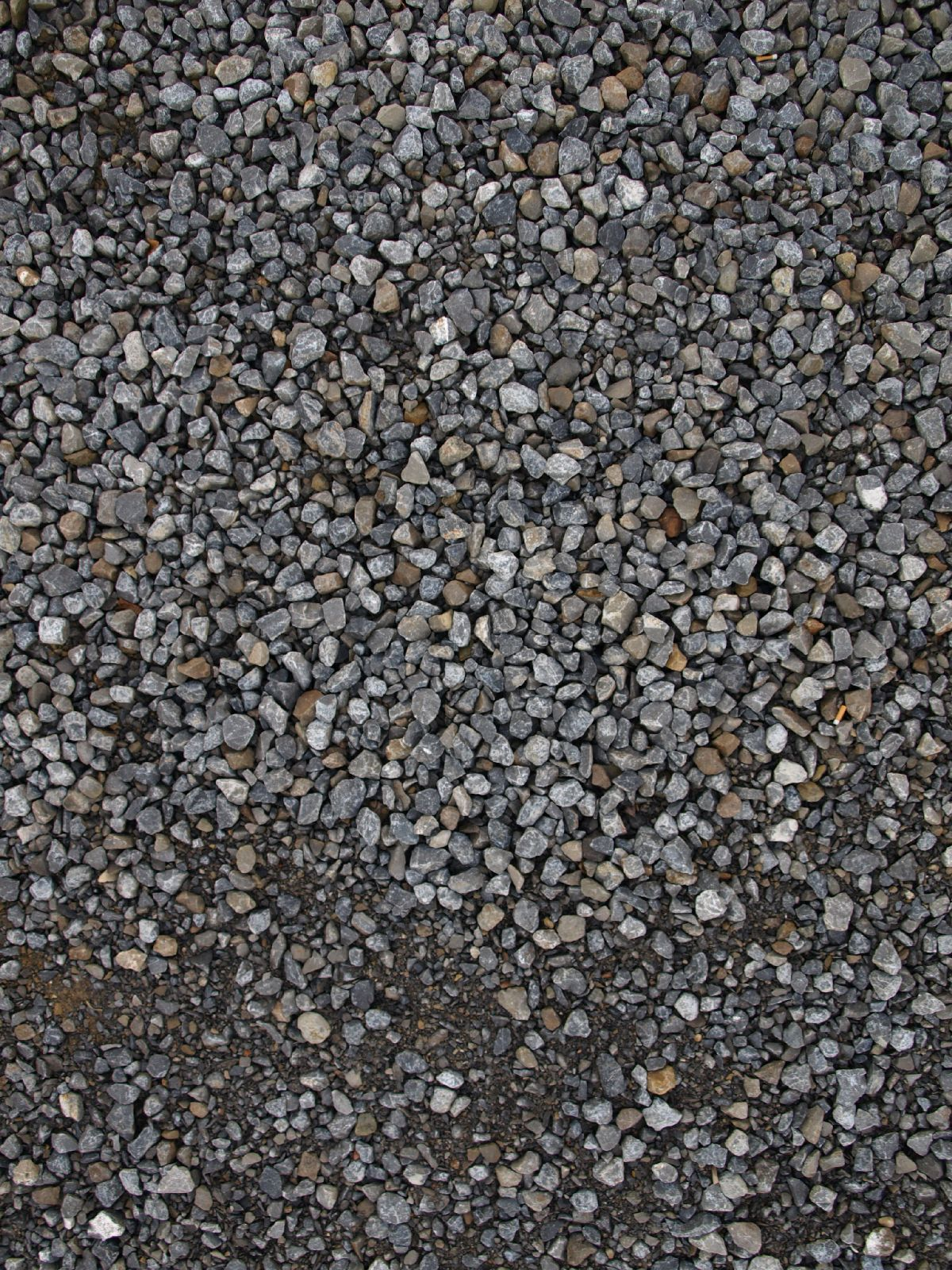 Ground-Nature_Texture_A_P5022121