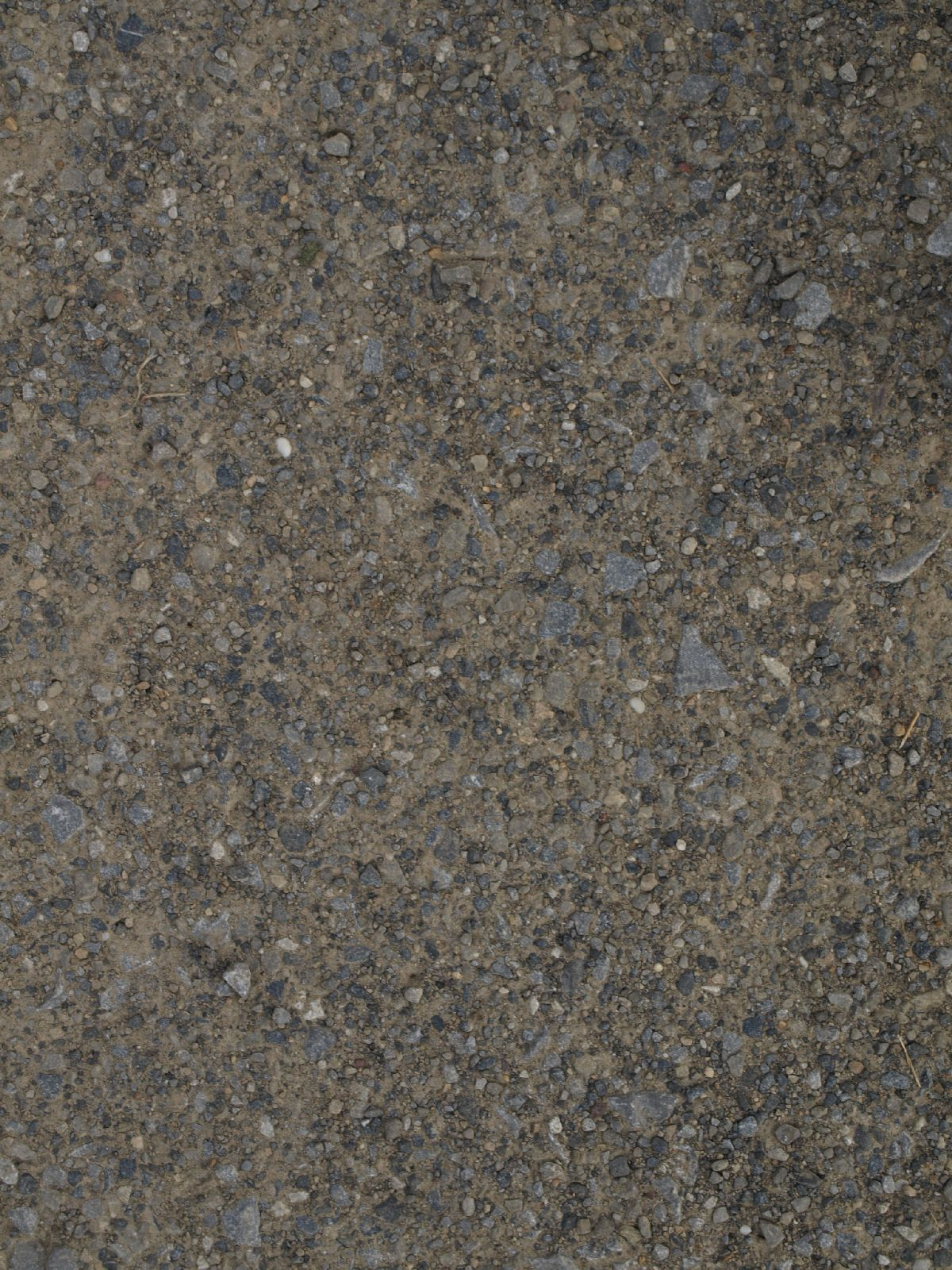 Ground-Nature_Texture_A_P8174447
