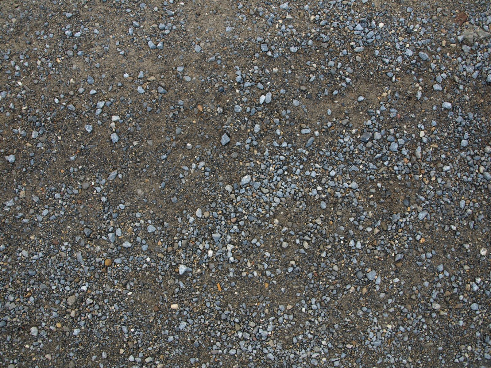 Ground-Nature_Texture_A_P8214558