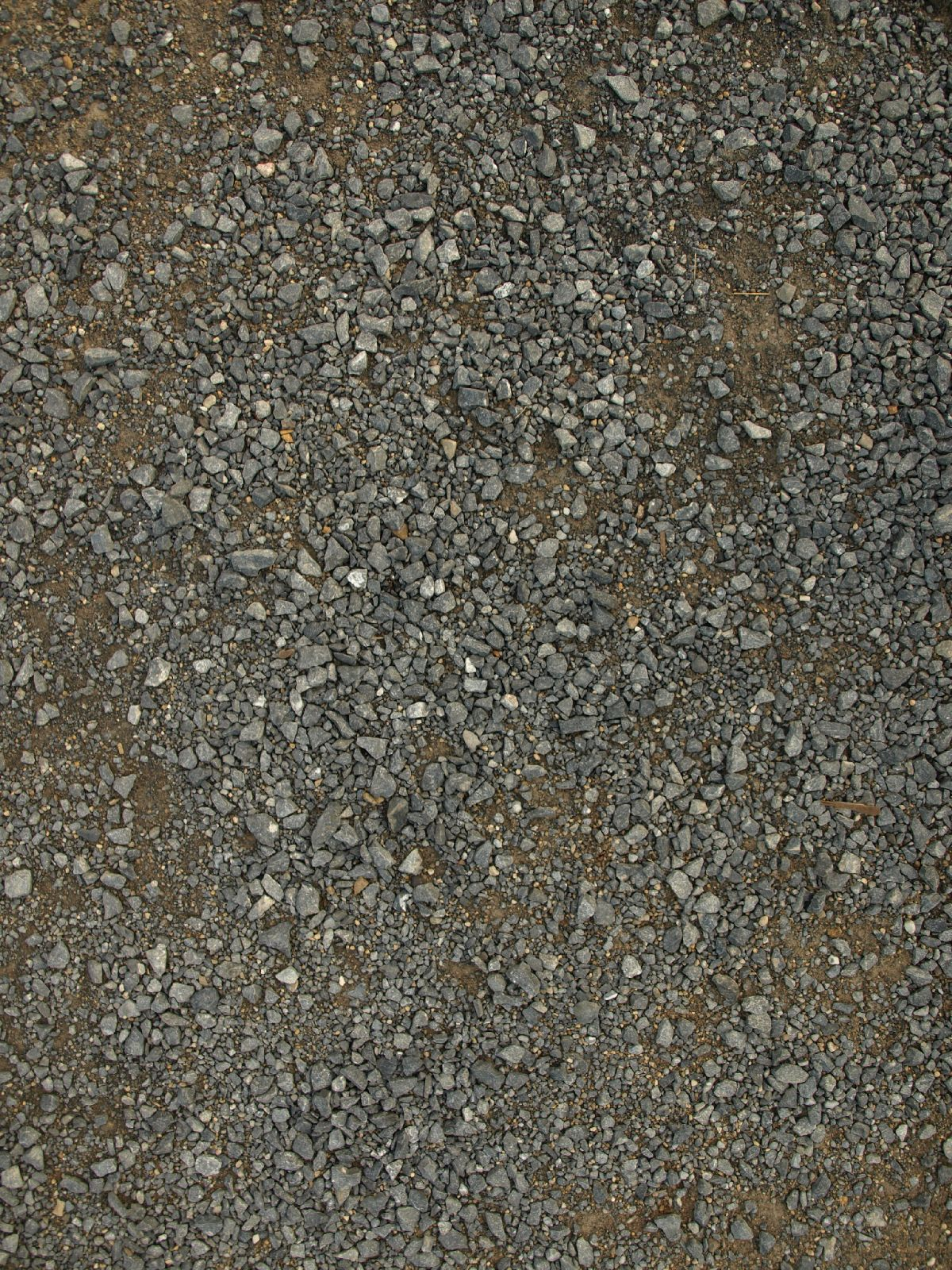Ground-Nature_Texture_A_P8214564
