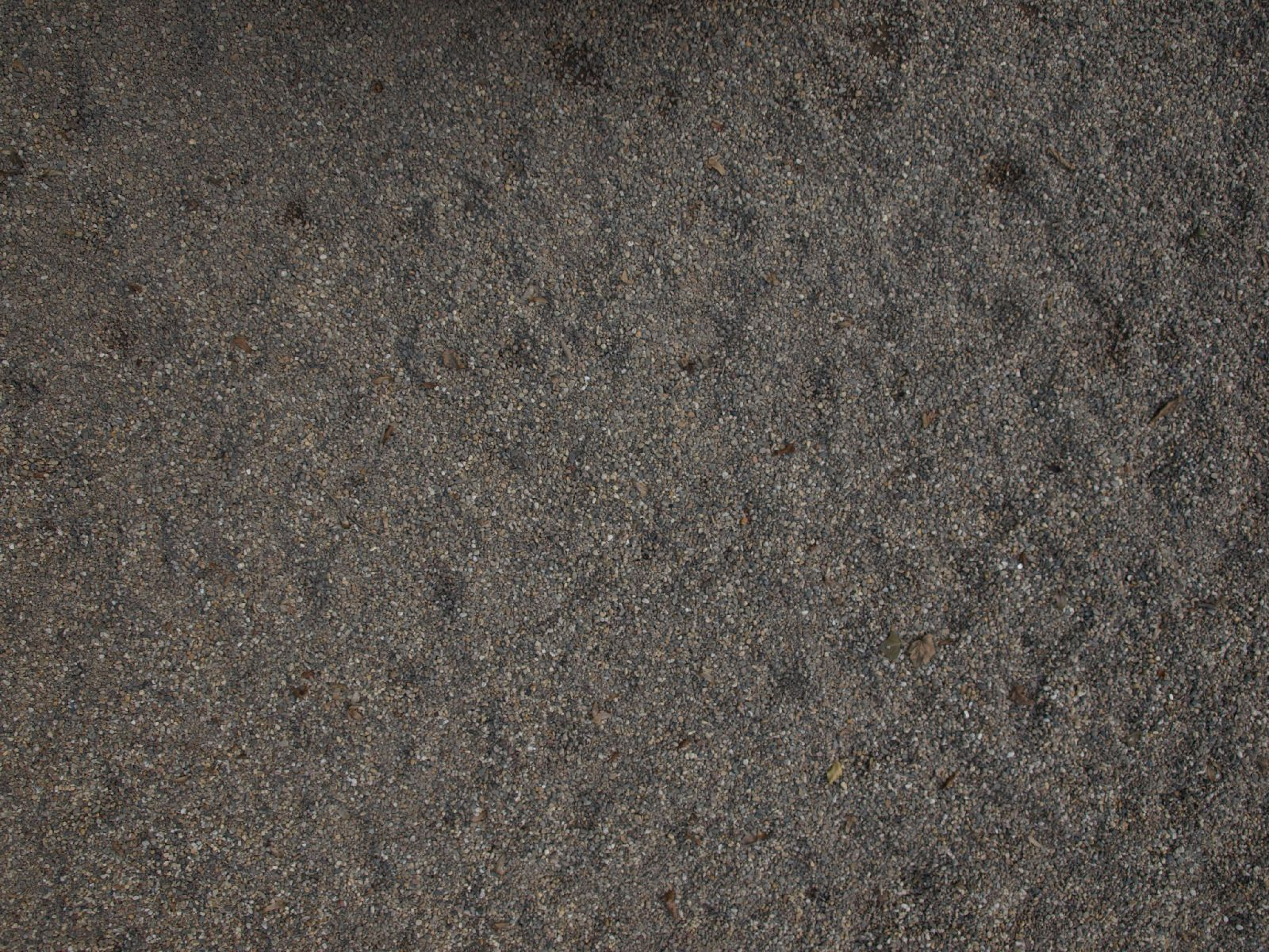 Ground-Nature_Texture_A_P9129608