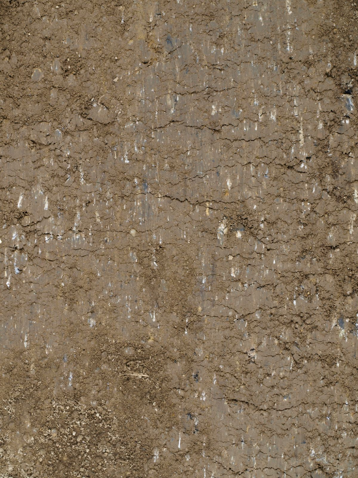 Ground-Nature_Texture_A_P9195032