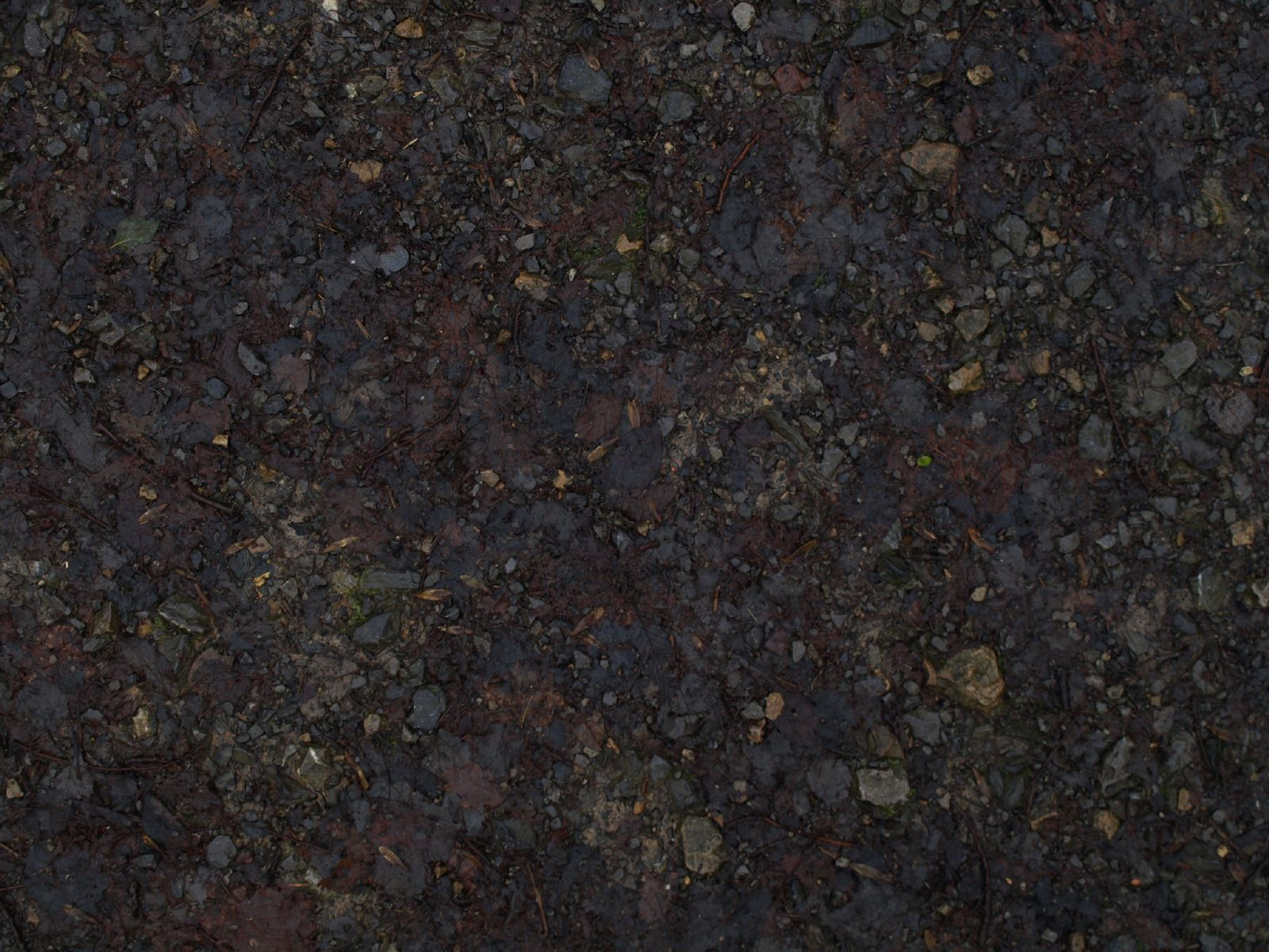 Ground-Nature_Texture_A_PC217921