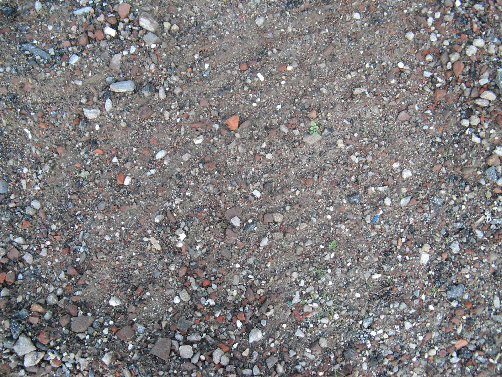 Ground-Nature_Texture_B_00767