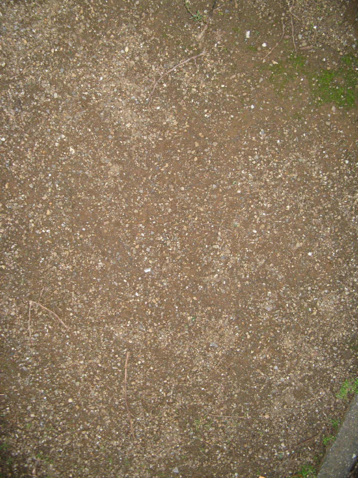 Ground-Nature_Texture_B_0788