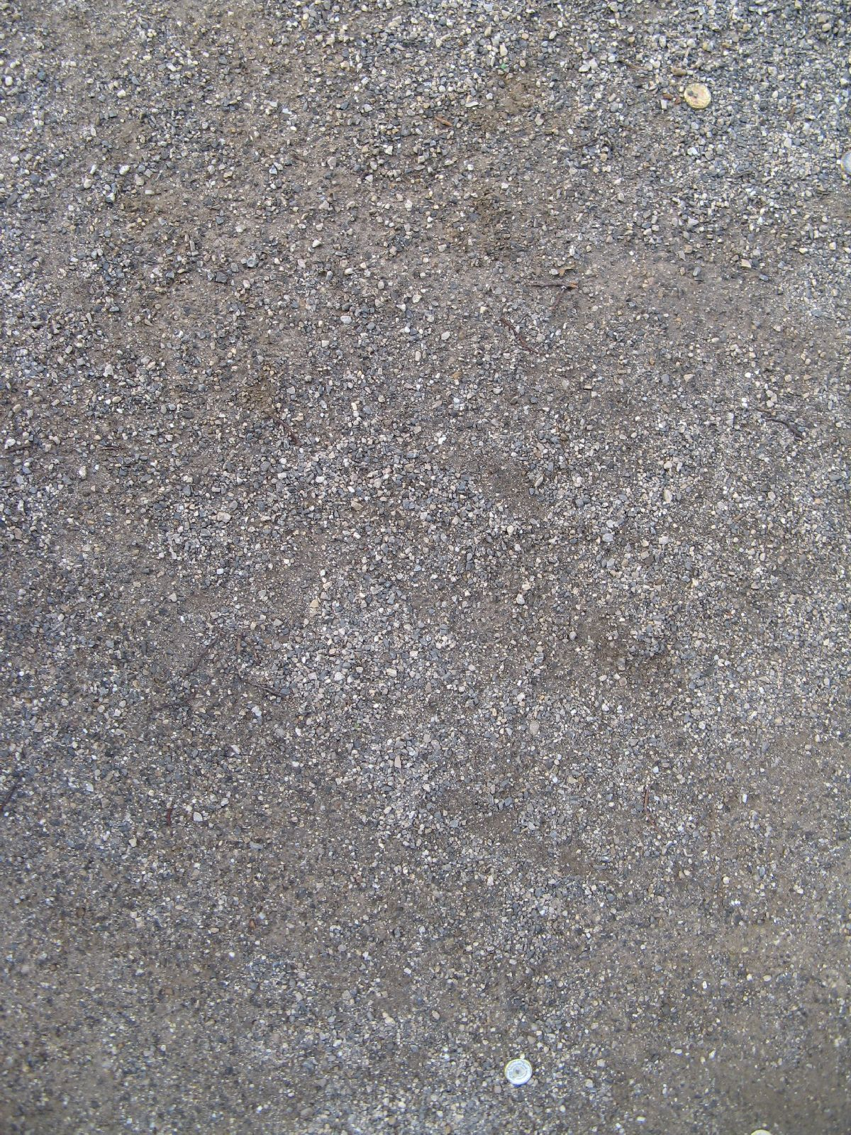 Ground-Nature_Texture_B_0885