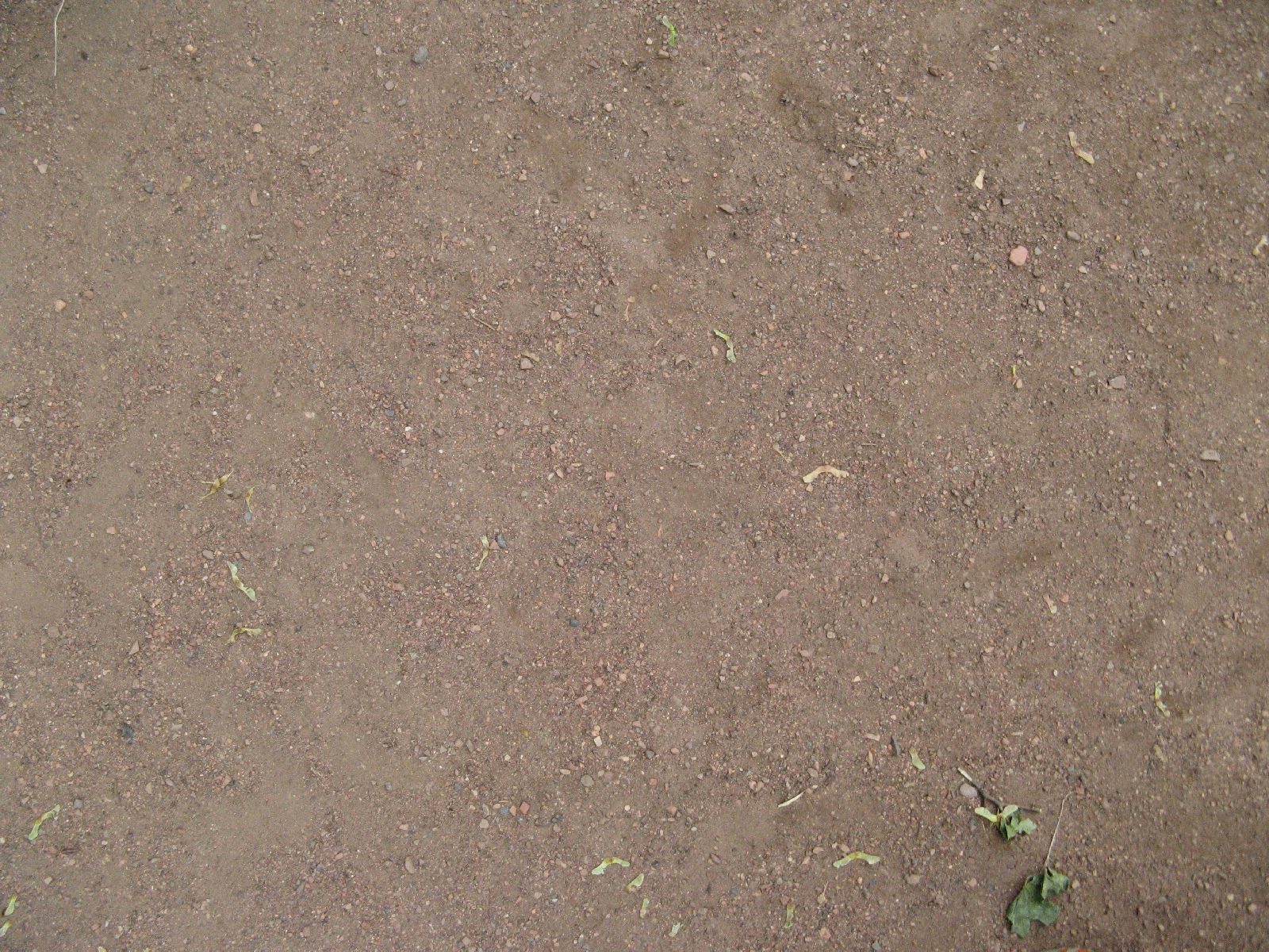 Ground-Nature_Texture_B_1089