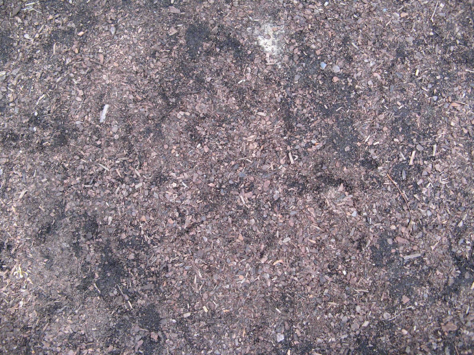 Ground-Nature_Texture_B_1092