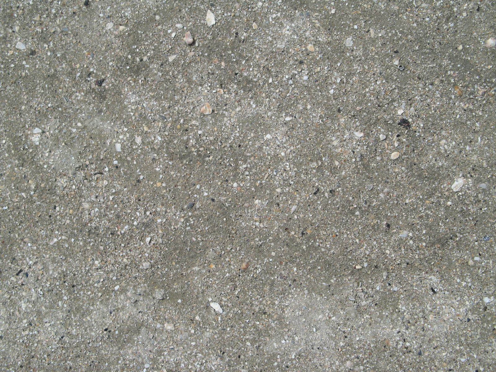 Ground-Nature_Texture_B_1725