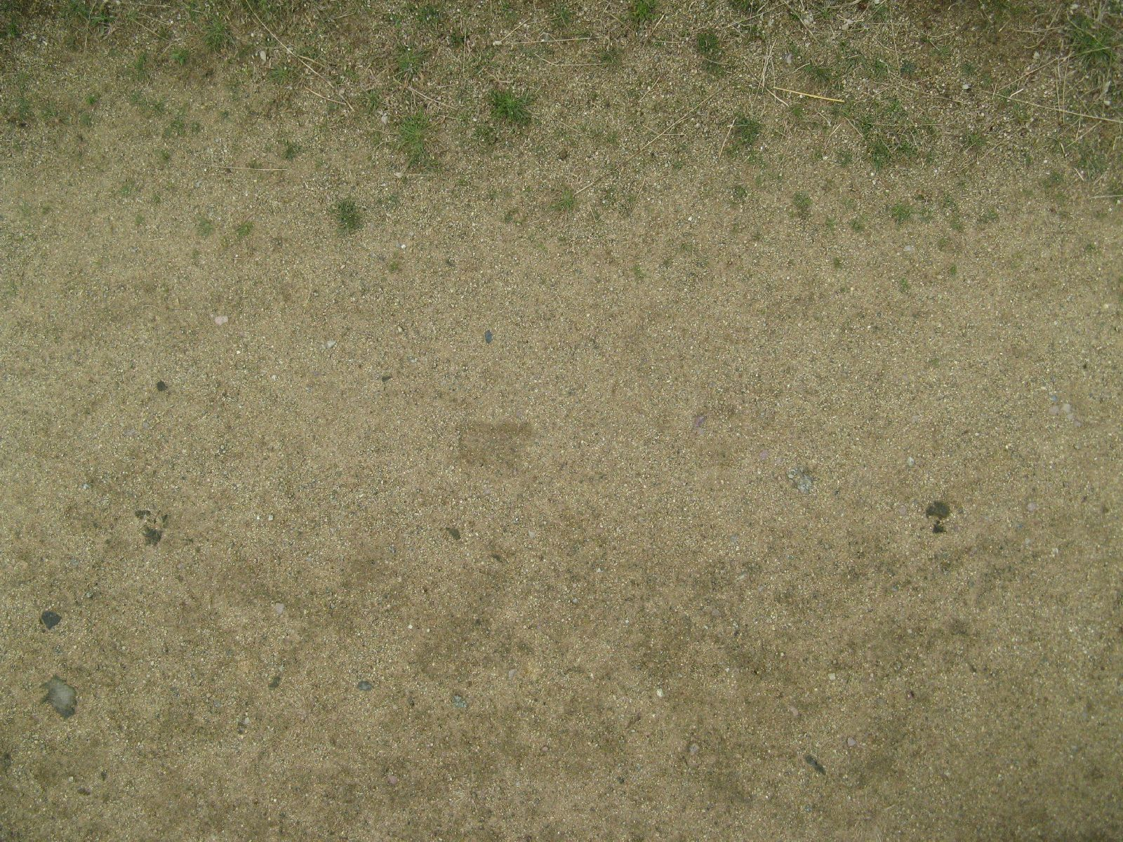Ground-Nature_Texture_B_2122