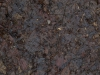 Ground-Nature_Texture_A_PC217943