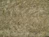 Ground-Nature_Texture_B_01020