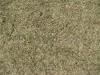 Ground-Nature_Texture_B_01022