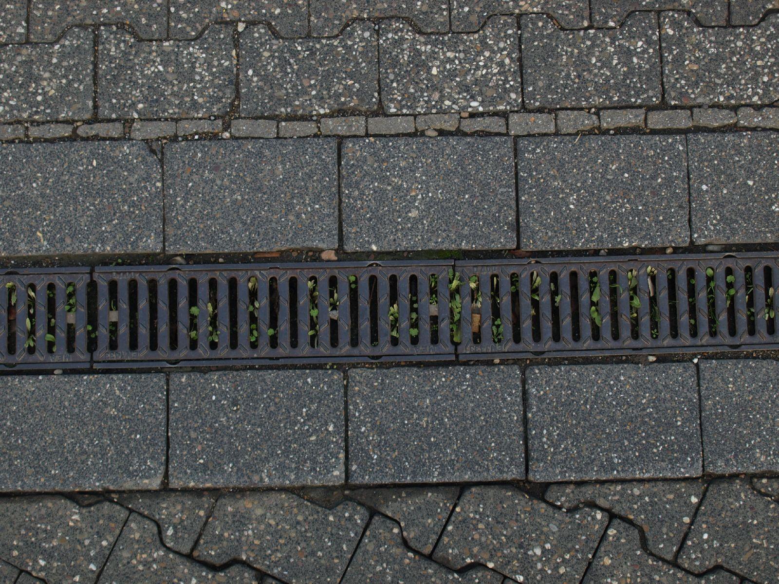 Ground-Add_Texture_A_P9209742