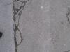 Ground-Add_Texture_B_2547