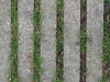 Ground-Add_Texture_B_2995