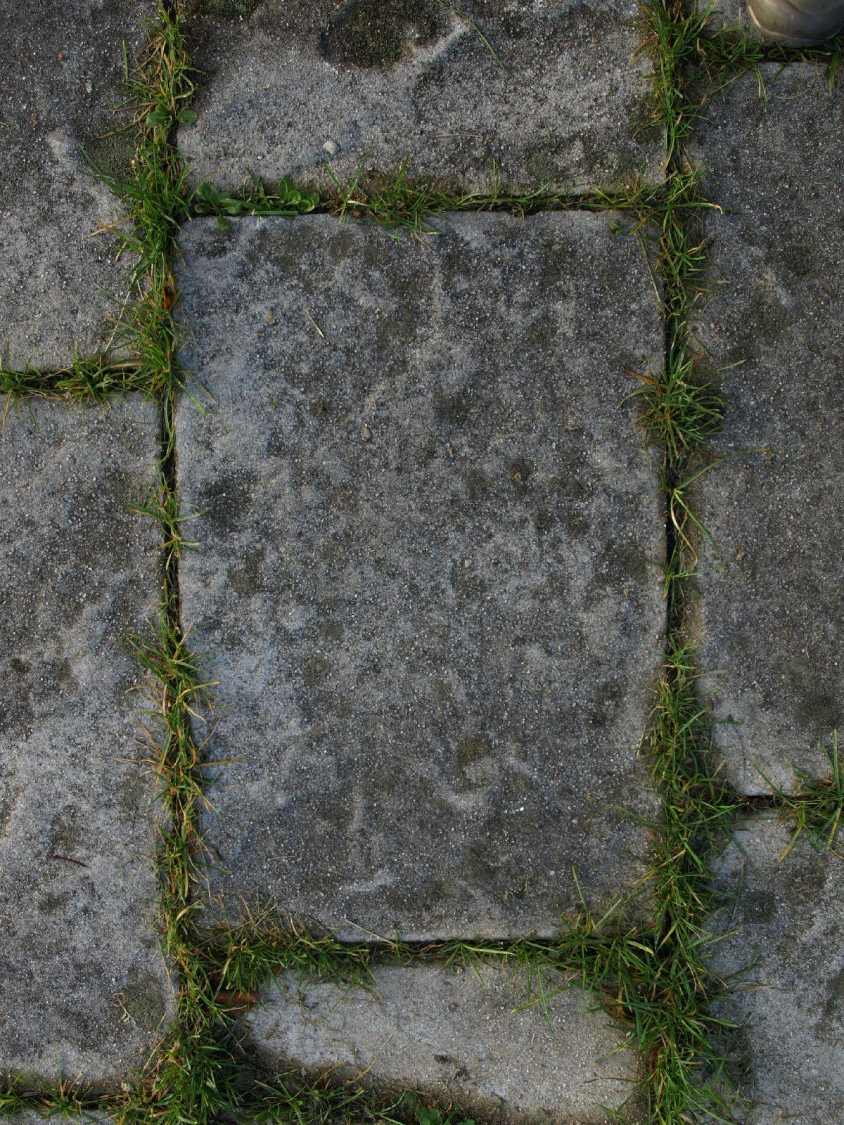 Ground-Urban_Texture_A_P8234591