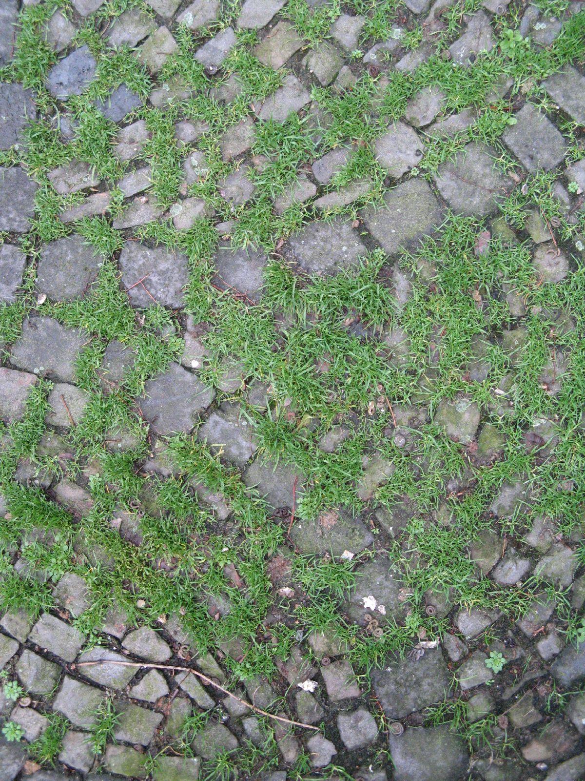 Ground-Urban_Texture_B_02248