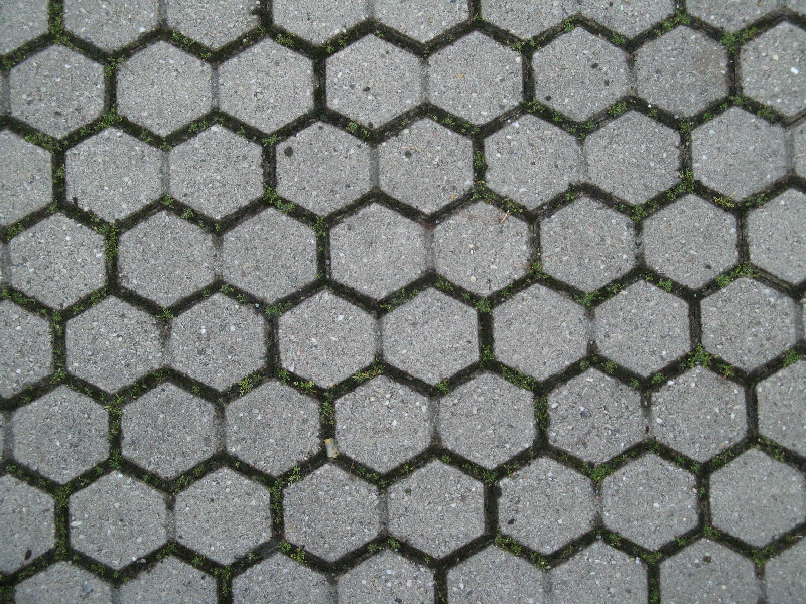 Ground-Urban_Texture_B_1081