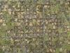 Ground-Urban_Texture_B_0189
