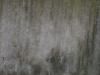 Grunge_Texture_A_P2280884