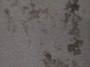 Grunge_Texture_A_P4131152
